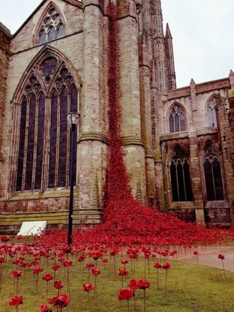 Weeping Window - Poppies