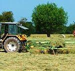 Hay making at Sink Green Farm