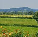 View of the meadows around Sink Green Farm Hereford
