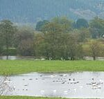 View of the meadows around Sink Green Farm Hereford5