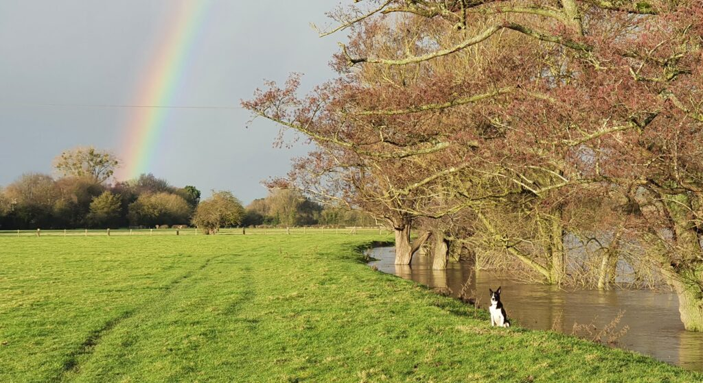 Seb and the rianbow 1