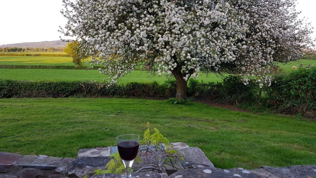 Perfect spring evening