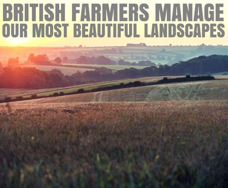 Our most beautiful landscape