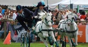 Monmouth show 2
